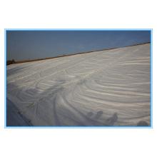 PP / PET Fibra Curta / Filo Contínuo Geotextil Não Tecido (100-1200g)