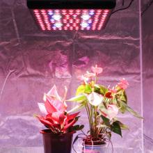 Светодиодные лампы для выращивания растений COB, 2000 Вт