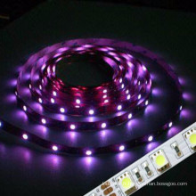 Certification CE & ROHS NON étanche à l'eau 3528 SMD flexible Led Strip Lighting