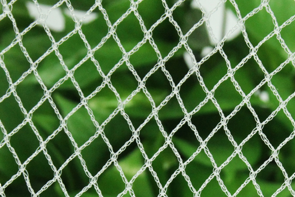 Orchard Anti Bird Netting MONO Knitted