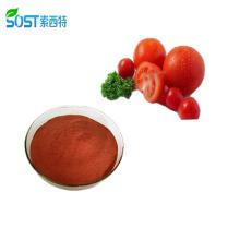 Chinese Supplier Organic Lycopene Price Tomato Powder