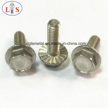 Tornillos tornillo/perno/Self-Tapping tornillo/montajes de alta calidad