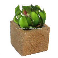 2017 artificial bromeliad amaryllis planta ornamental de interior
