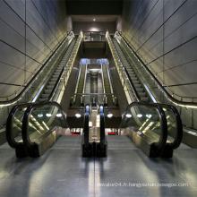 Escalier avec Vvvf Drive for Public Traffic 30/35 Degree