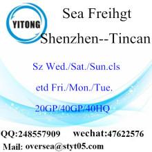 ميناء شنتشن الشحن البحري الشحن إلى Tincan