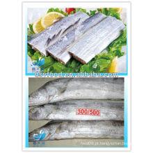FIBRA CONGELADA FISH STEAK / HAIRTAIL STEAK / RODA INTEIRO