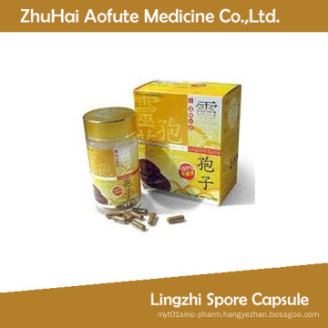 Lingzhi Spore Capsule for Sale