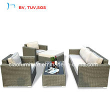 Hot Selling Rattan Garden Furniture for Sofa Set (CF969)