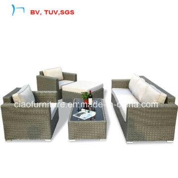 Muebles de jardín de la rota caliente para el sistema del sofá (CF969)