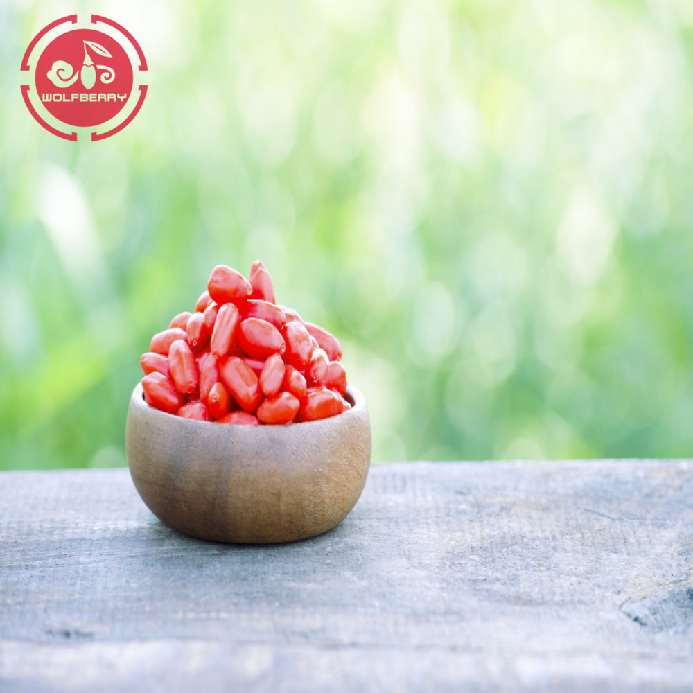 Nutrição alta Certified Healthy Low pesticida Goji Berries