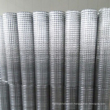 Best price 1x1 galvanized welded wire mesh anping supplier