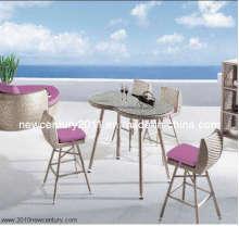 Bar-Tisch und Stuhl (7034)