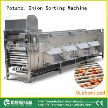 Clasificador de patatas y cebollas, máquina de clasificación de cebolla Og-606