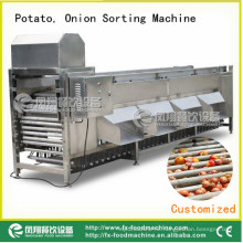 Potato and Onion Sorter, Onion Sorting Machine Og-606