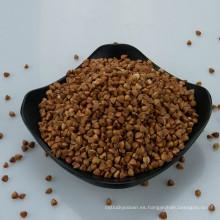 precio de trigo sarraceno asado alforfón crudo de alta calidad