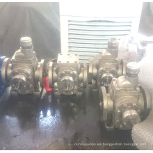 Cabeza de acero inoxidable de Ycb Gear Pump