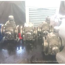 Tête en acier inoxydable de la pompe à engrenages Ycb