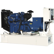 110 kVA Open Type Perkins Powered Genset ETPG110