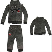 Casual Wear, Leisure Clothing, Sports Sweatshirt, Fashion Hoody Jacket with Pant (SQM-108)
