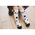 Chaussettes en coton pour enfant Chaussettes en coton Chaussettes de bonne qualité