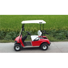 Chariots de golf à essence ou à essence à 2 places à vendre