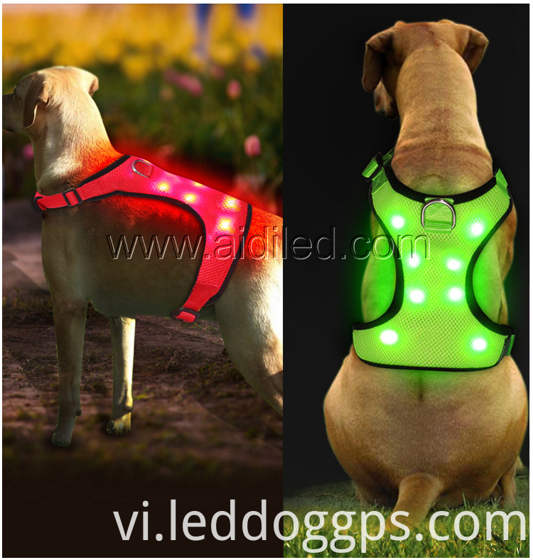 Dog Coat Harness