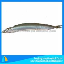 Fornecimento de peixe alimentar fresco lança de areia congelada