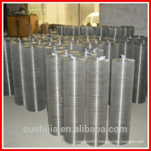 1/4 galvanized welded wire mesh factory