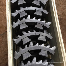 Broyeur à rouleaux à denture double à charbon petit
