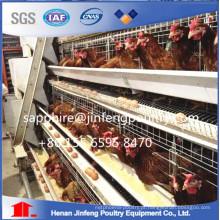 Gaiola superior da camada da galinha da venda da fábrica para o equipamento das aves domésticas de África