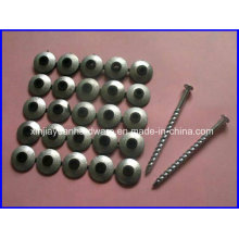 Best Selling Screw Roofing Nail with Neoprene Washer