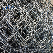 China Pvc Coated Anping Galvanized Hexagonal Wire Mesh