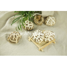 Getrockneter Blumen-Pilz, Yongxing Shiitake-Pilz