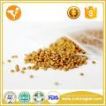 Proveedor chino Alimentos orgánicos Alimentos baratos para gatos secos