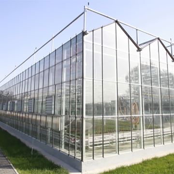 Toughened glass for venlo glass greenhouse