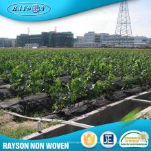Productos de venta caliente Polipropileno Plástico Agricultura Película negra