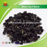 Manufacture Supply Black Goji Berry