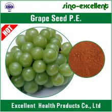 Extrait de graine de raisin Poudre avec polyphénols 30% -90%