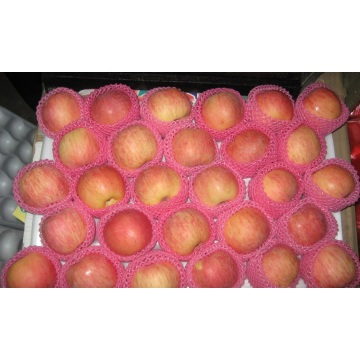 Fresh Shaanxi Fuji Apple