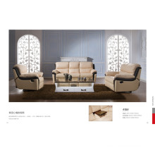 Living Room Sofa with Modern Genuine Leather Sofa Set (418)