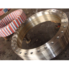 China Custom Stainless Steel Forged