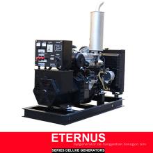 Niedriger Preis Schalldichter Diesel Generator (BIS20D)