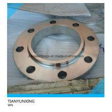 JIS F304 bride de soudure en acier inoxydable