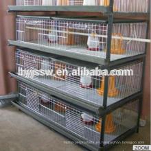 Jaula de alta calidad del polluelo del bebé para la venta, jaulas de la cría del polluelo