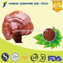 China novo produto sono medicina 10% Reishi cogumelo PE