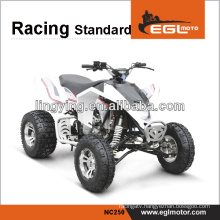 2014 new modle,250cc adult electric quad atv