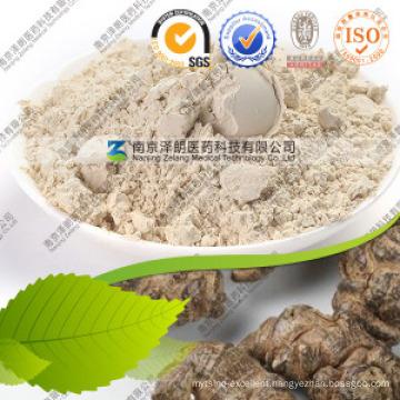 Natural Radix Notoginseng Panax Notoginseng Extract Notoginsenoside