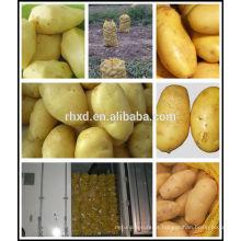 Batatas orgânicas frescas do vendedor de batata chinesa