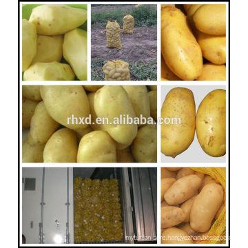 Organic potatoes fresh from Chinese potato seller