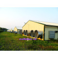 Equipamento de Pecuária Automática para Frangos de Corte com Construção Pré-fabricada com Projeto Livre